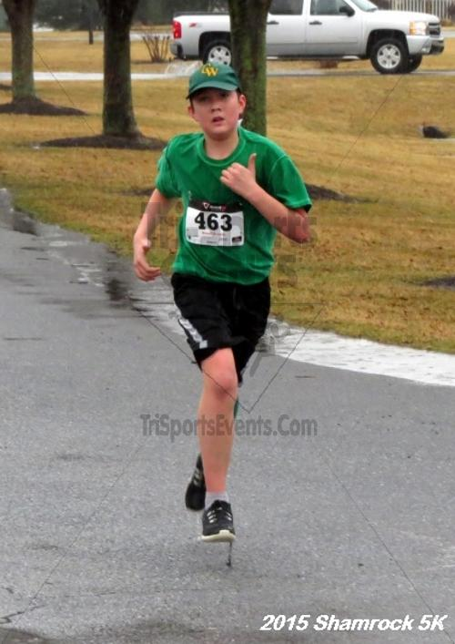 Shamrock 5K Run/Walk<br><br><br><br><a href='http://www.trisportsevents.com/pics/15_Shamrock_5K_088.JPG' download='15_Shamrock_5K_088.JPG'>Click here to download.</a><Br><a href='http://www.facebook.com/sharer.php?u=http:%2F%2Fwww.trisportsevents.com%2Fpics%2F15_Shamrock_5K_088.JPG&t=Shamrock 5K Run/Walk' target='_blank'><img src='images/fb_share.png' width='100'></a>