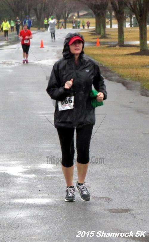 Shamrock 5K Run/Walk<br><br><br><br><a href='http://www.trisportsevents.com/pics/15_Shamrock_5K_110.JPG' download='15_Shamrock_5K_110.JPG'>Click here to download.</a><Br><a href='http://www.facebook.com/sharer.php?u=http:%2F%2Fwww.trisportsevents.com%2Fpics%2F15_Shamrock_5K_110.JPG&t=Shamrock 5K Run/Walk' target='_blank'><img src='images/fb_share.png' width='100'></a>