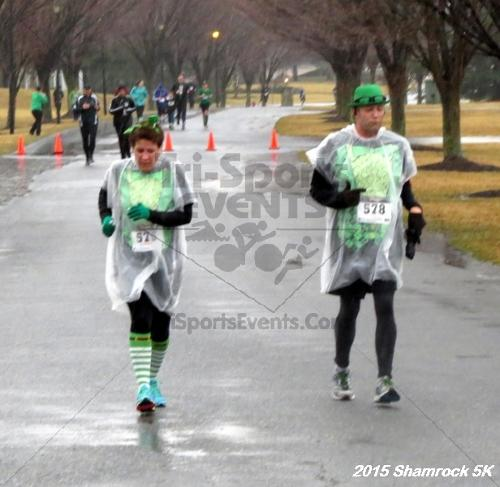Shamrock 5K Run/Walk<br><br><br><br><a href='http://www.trisportsevents.com/pics/15_Shamrock_5K_134.JPG' download='15_Shamrock_5K_134.JPG'>Click here to download.</a><Br><a href='http://www.facebook.com/sharer.php?u=http:%2F%2Fwww.trisportsevents.com%2Fpics%2F15_Shamrock_5K_134.JPG&t=Shamrock 5K Run/Walk' target='_blank'><img src='images/fb_share.png' width='100'></a>