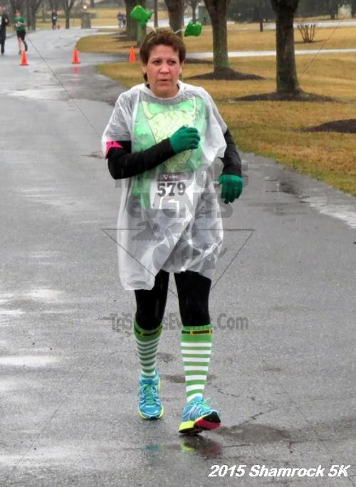 Shamrock 5K Run/Walk<br><br><br><br><a href='http://www.trisportsevents.com/pics/15_Shamrock_5K_135.JPG' download='15_Shamrock_5K_135.JPG'>Click here to download.</a><Br><a href='http://www.facebook.com/sharer.php?u=http:%2F%2Fwww.trisportsevents.com%2Fpics%2F15_Shamrock_5K_135.JPG&t=Shamrock 5K Run/Walk' target='_blank'><img src='images/fb_share.png' width='100'></a>