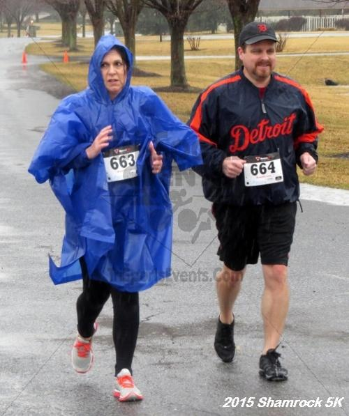 Shamrock 5K Run/Walk<br><br><br><br><a href='http://www.trisportsevents.com/pics/15_Shamrock_5K_153.JPG' download='15_Shamrock_5K_153.JPG'>Click here to download.</a><Br><a href='http://www.facebook.com/sharer.php?u=http:%2F%2Fwww.trisportsevents.com%2Fpics%2F15_Shamrock_5K_153.JPG&t=Shamrock 5K Run/Walk' target='_blank'><img src='images/fb_share.png' width='100'></a>