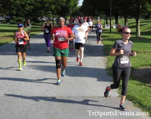 BrainStrong 5K Run/Walk<br><br><br><br><a href='https://www.trisportsevents.com/pics/16_BrainStrong_5K_033.JPG' download='16_BrainStrong_5K_033.JPG'>Click here to download.</a><Br><a href='http://www.facebook.com/sharer.php?u=http:%2F%2Fwww.trisportsevents.com%2Fpics%2F16_BrainStrong_5K_033.JPG&t=BrainStrong 5K Run/Walk' target='_blank'><img src='images/fb_share.png' width='100'></a>