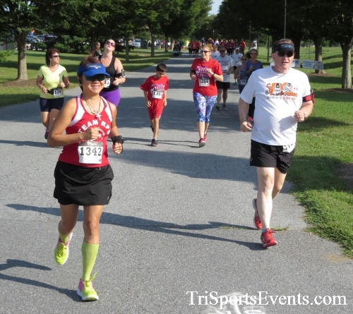 BrainStrong 5K Run/Walk<br><br><br><br><a href='https://www.trisportsevents.com/pics/16_BrainStrong_5K_034.JPG' download='16_BrainStrong_5K_034.JPG'>Click here to download.</a><Br><a href='http://www.facebook.com/sharer.php?u=http:%2F%2Fwww.trisportsevents.com%2Fpics%2F16_BrainStrong_5K_034.JPG&t=BrainStrong 5K Run/Walk' target='_blank'><img src='images/fb_share.png' width='100'></a>