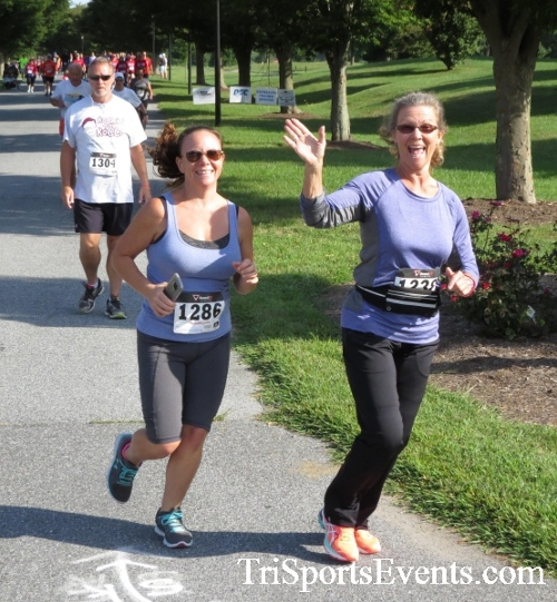 BrainStrong 5K Run/Walk<br><br><br><br><a href='https://www.trisportsevents.com/pics/16_BrainStrong_5K_036.JPG' download='16_BrainStrong_5K_036.JPG'>Click here to download.</a><Br><a href='http://www.facebook.com/sharer.php?u=http:%2F%2Fwww.trisportsevents.com%2Fpics%2F16_BrainStrong_5K_036.JPG&t=BrainStrong 5K Run/Walk' target='_blank'><img src='images/fb_share.png' width='100'></a>