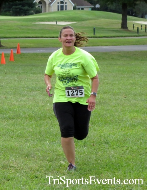 BrainStrong 5K Run/Walk<br><br><br><br><a href='https://www.trisportsevents.com/pics/16_BrainStrong_5K_149.JPG' download='16_BrainStrong_5K_149.JPG'>Click here to download.</a><Br><a href='http://www.facebook.com/sharer.php?u=http:%2F%2Fwww.trisportsevents.com%2Fpics%2F16_BrainStrong_5K_149.JPG&t=BrainStrong 5K Run/Walk' target='_blank'><img src='images/fb_share.png' width='100'></a>