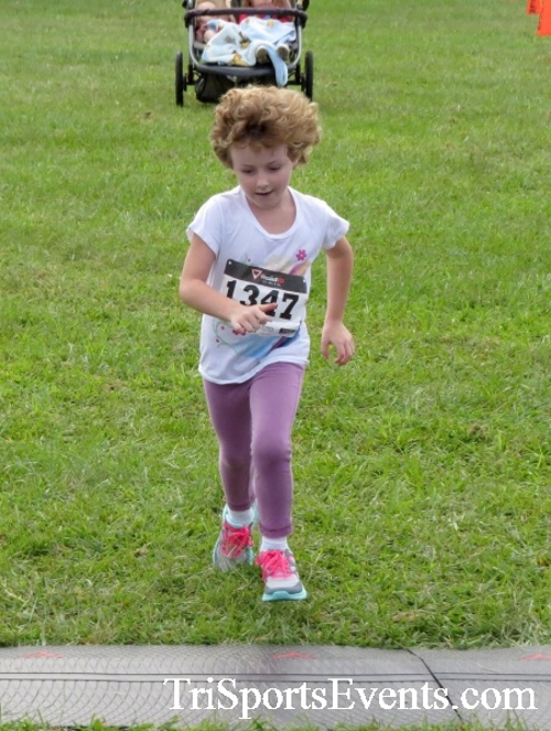 BrainStrong 5K Run/Walk<br><br><br><br><a href='https://www.trisportsevents.com/pics/16_BrainStrong_5K_174.JPG' download='16_BrainStrong_5K_174.JPG'>Click here to download.</a><Br><a href='http://www.facebook.com/sharer.php?u=http:%2F%2Fwww.trisportsevents.com%2Fpics%2F16_BrainStrong_5K_174.JPG&t=BrainStrong 5K Run/Walk' target='_blank'><img src='images/fb_share.png' width='100'></a>