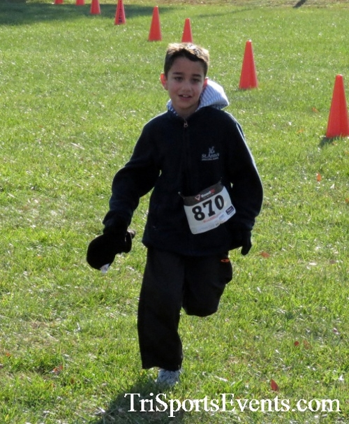 Cards to Beat Cancer 5K Run/Walk<br><br><br><br><a href='https://www.trisportsevents.com/pics/16_Cards_to_Beat_Cancer_5K_087.JPG' download='16_Cards_to_Beat_Cancer_5K_087.JPG'>Click here to download.</a><Br><a href='http://www.facebook.com/sharer.php?u=http:%2F%2Fwww.trisportsevents.com%2Fpics%2F16_Cards_to_Beat_Cancer_5K_087.JPG&t=Cards to Beat Cancer 5K Run/Walk' target='_blank'><img src='images/fb_share.png' width='100'></a>