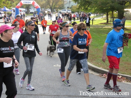Chester River Challenge Half Marathon & 5K<br><br><br><br><a href='https://www.trisportsevents.com/pics/16_Chester_River_Chall;enge_017.JPG' download='16_Chester_River_Chall;enge_017.JPG'>Click here to download.</a><Br><a href='http://www.facebook.com/sharer.php?u=http:%2F%2Fwww.trisportsevents.com%2Fpics%2F16_Chester_River_Chall;enge_017.JPG&t=Chester River Challenge Half Marathon & 5K' target='_blank'><img src='images/fb_share.png' width='100'></a>