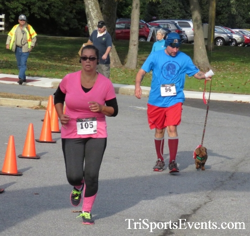 Chester River Challenge Half Marathon & 5K<br><br><br><br><a href='https://www.trisportsevents.com/pics/16_Chester_River_Chall;enge_074.JPG' download='16_Chester_River_Chall;enge_074.JPG'>Click here to download.</a><Br><a href='http://www.facebook.com/sharer.php?u=http:%2F%2Fwww.trisportsevents.com%2Fpics%2F16_Chester_River_Chall;enge_074.JPG&t=Chester River Challenge Half Marathon & 5K' target='_blank'><img src='images/fb_share.png' width='100'></a>