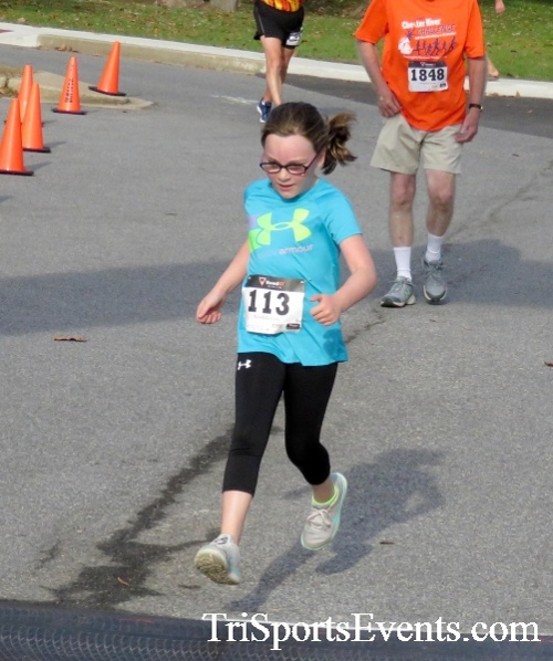 Chester River Challenge Half Marathon & 5K<br><br><br><br><a href='https://www.trisportsevents.com/pics/16_Chester_River_Chall;enge_078.JPG' download='16_Chester_River_Chall;enge_078.JPG'>Click here to download.</a><Br><a href='http://www.facebook.com/sharer.php?u=http:%2F%2Fwww.trisportsevents.com%2Fpics%2F16_Chester_River_Chall;enge_078.JPG&t=Chester River Challenge Half Marathon & 5K' target='_blank'><img src='images/fb_share.png' width='100'></a>
