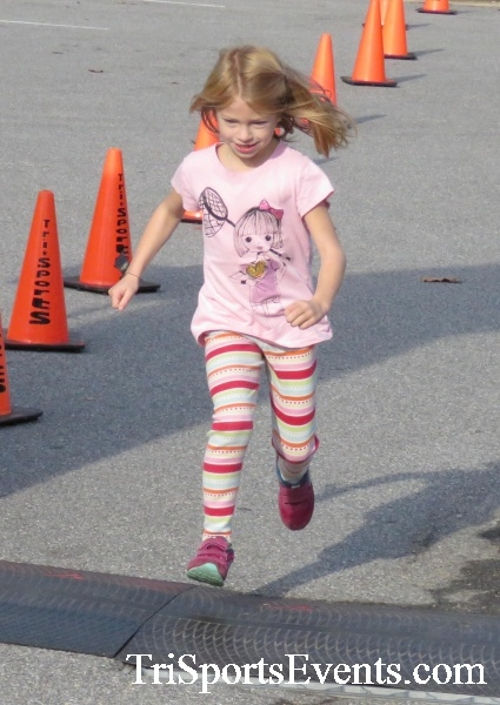 Chester River Challenge Half Marathon & 5K<br><br><br><br><a href='https://www.trisportsevents.com/pics/16_Chester_River_Chall;enge_102.JPG' download='16_Chester_River_Chall;enge_102.JPG'>Click here to download.</a><Br><a href='http://www.facebook.com/sharer.php?u=http:%2F%2Fwww.trisportsevents.com%2Fpics%2F16_Chester_River_Chall;enge_102.JPG&t=Chester River Challenge Half Marathon & 5K' target='_blank'><img src='images/fb_share.png' width='100'></a>
