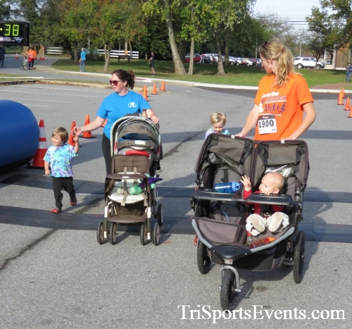 Chester River Challenge Half Marathon & 5K<br><br><br><br><a href='https://www.trisportsevents.com/pics/16_Chester_River_Chall;enge_110.JPG' download='16_Chester_River_Chall;enge_110.JPG'>Click here to download.</a><Br><a href='http://www.facebook.com/sharer.php?u=http:%2F%2Fwww.trisportsevents.com%2Fpics%2F16_Chester_River_Chall;enge_110.JPG&t=Chester River Challenge Half Marathon & 5K' target='_blank'><img src='images/fb_share.png' width='100'></a>