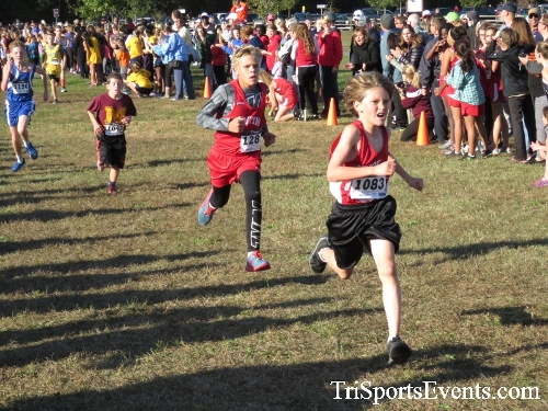 Central Delaware Middle School XC Boys/Girls Results<br><br><br><br><a href='https://www.trisportsevents.com/pics/16_DAAD_MS_XC_009.JPG' download='16_DAAD_MS_XC_009.JPG'>Click here to download.</a><Br><a href='http://www.facebook.com/sharer.php?u=http:%2F%2Fwww.trisportsevents.com%2Fpics%2F16_DAAD_MS_XC_009.JPG&t=Central Delaware Middle School XC Boys/Girls Results' target='_blank'><img src='images/fb_share.png' width='100'></a>