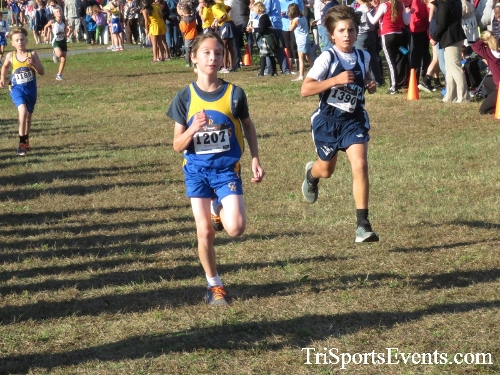 Central Delaware Middle School XC Boys/Girls Results<br><br><br><br><a href='http://www.trisportsevents.com/pics/16_DAAD_MS_XC_013.JPG' download='16_DAAD_MS_XC_013.JPG'>Click here to download.</a><Br><a href='http://www.facebook.com/sharer.php?u=http:%2F%2Fwww.trisportsevents.com%2Fpics%2F16_DAAD_MS_XC_013.JPG&t=Central Delaware Middle School XC Boys/Girls Results' target='_blank'><img src='images/fb_share.png' width='100'></a>