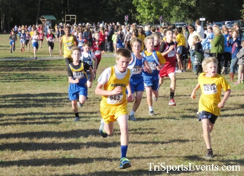 Central Delaware Middle School XC Boys/Girls Results<br><br><br><br><a href='https://www.trisportsevents.com/pics/16_DAAD_MS_XC_019.JPG' download='16_DAAD_MS_XC_019.JPG'>Click here to download.</a><Br><a href='http://www.facebook.com/sharer.php?u=http:%2F%2Fwww.trisportsevents.com%2Fpics%2F16_DAAD_MS_XC_019.JPG&t=Central Delaware Middle School XC Boys/Girls Results' target='_blank'><img src='images/fb_share.png' width='100'></a>
