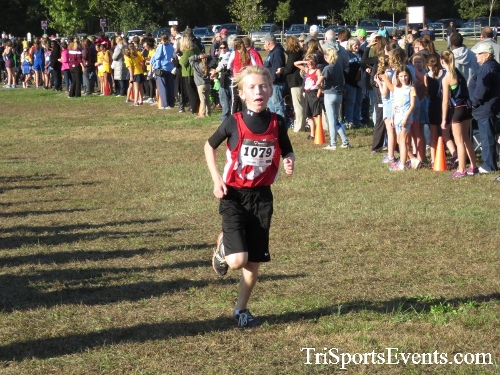 Central Delaware Middle School XC Boys/Girls Results<br><br><br><br><a href='https://www.trisportsevents.com/pics/16_DAAD_MS_XC_024.JPG' download='16_DAAD_MS_XC_024.JPG'>Click here to download.</a><Br><a href='http://www.facebook.com/sharer.php?u=http:%2F%2Fwww.trisportsevents.com%2Fpics%2F16_DAAD_MS_XC_024.JPG&t=Central Delaware Middle School XC Boys/Girls Results' target='_blank'><img src='images/fb_share.png' width='100'></a>