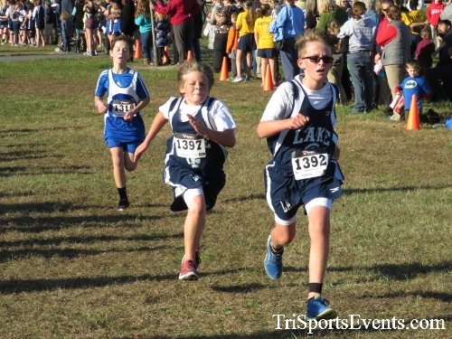 Central Delaware Middle School XC Boys/Girls Results<br><br><br><br><a href='http://www.trisportsevents.com/pics/16_DAAD_MS_XC_039.JPG' download='16_DAAD_MS_XC_039.JPG'>Click here to download.</a><Br><a href='http://www.facebook.com/sharer.php?u=http:%2F%2Fwww.trisportsevents.com%2Fpics%2F16_DAAD_MS_XC_039.JPG&t=Central Delaware Middle School XC Boys/Girls Results' target='_blank'><img src='images/fb_share.png' width='100'></a>