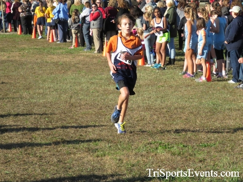 Central Delaware Middle School XC Boys/Girls Results<br><br><br><br><a href='https://www.trisportsevents.com/pics/16_DAAD_MS_XC_044.JPG' download='16_DAAD_MS_XC_044.JPG'>Click here to download.</a><Br><a href='http://www.facebook.com/sharer.php?u=http:%2F%2Fwww.trisportsevents.com%2Fpics%2F16_DAAD_MS_XC_044.JPG&t=Central Delaware Middle School XC Boys/Girls Results' target='_blank'><img src='images/fb_share.png' width='100'></a>