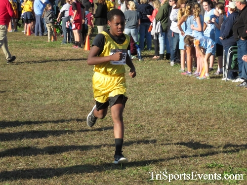 Central Delaware Middle School XC Boys/Girls Results<br><br><br><br><a href='https://www.trisportsevents.com/pics/16_DAAD_MS_XC_050.JPG' download='16_DAAD_MS_XC_050.JPG'>Click here to download.</a><Br><a href='http://www.facebook.com/sharer.php?u=http:%2F%2Fwww.trisportsevents.com%2Fpics%2F16_DAAD_MS_XC_050.JPG&t=Central Delaware Middle School XC Boys/Girls Results' target='_blank'><img src='images/fb_share.png' width='100'></a>