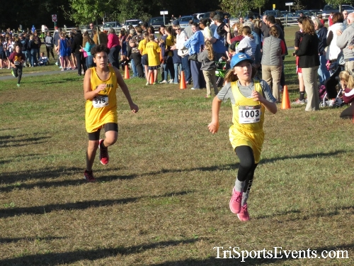 Central Delaware Middle School XC Boys/Girls Results<br><br><br><br><a href='https://www.trisportsevents.com/pics/16_DAAD_MS_XC_052.JPG' download='16_DAAD_MS_XC_052.JPG'>Click here to download.</a><Br><a href='http://www.facebook.com/sharer.php?u=http:%2F%2Fwww.trisportsevents.com%2Fpics%2F16_DAAD_MS_XC_052.JPG&t=Central Delaware Middle School XC Boys/Girls Results' target='_blank'><img src='images/fb_share.png' width='100'></a>