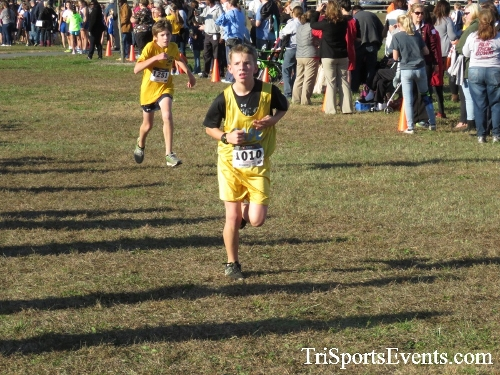 Central Delaware Middle School XC Boys/Girls Results<br><br><br><br><a href='https://www.trisportsevents.com/pics/16_DAAD_MS_XC_056.JPG' download='16_DAAD_MS_XC_056.JPG'>Click here to download.</a><Br><a href='http://www.facebook.com/sharer.php?u=http:%2F%2Fwww.trisportsevents.com%2Fpics%2F16_DAAD_MS_XC_056.JPG&t=Central Delaware Middle School XC Boys/Girls Results' target='_blank'><img src='images/fb_share.png' width='100'></a>