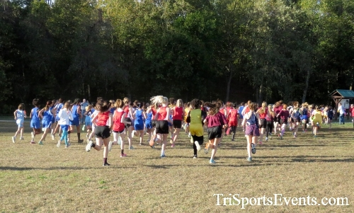 Central Delaware Middle School XC Boys/Girls Results<br><br><br><br><a href='https://www.trisportsevents.com/pics/16_DAAD_MS_XC_084.JPG' download='16_DAAD_MS_XC_084.JPG'>Click here to download.</a><Br><a href='http://www.facebook.com/sharer.php?u=http:%2F%2Fwww.trisportsevents.com%2Fpics%2F16_DAAD_MS_XC_084.JPG&t=Central Delaware Middle School XC Boys/Girls Results' target='_blank'><img src='images/fb_share.png' width='100'></a>