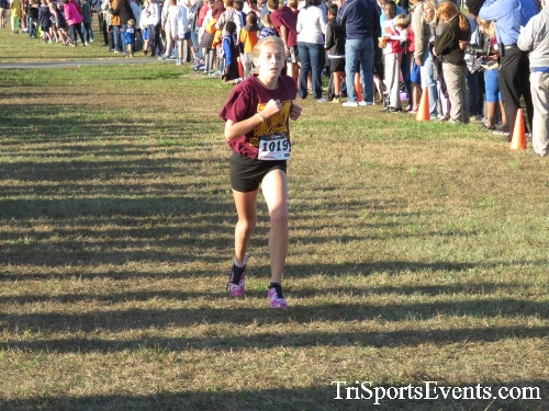 Central Delaware Middle School XC Boys/Girls Results<br><br><br><br><a href='http://www.trisportsevents.com/pics/16_DAAD_MS_XC_094.JPG' download='16_DAAD_MS_XC_094.JPG'>Click here to download.</a><Br><a href='http://www.facebook.com/sharer.php?u=http:%2F%2Fwww.trisportsevents.com%2Fpics%2F16_DAAD_MS_XC_094.JPG&t=Central Delaware Middle School XC Boys/Girls Results' target='_blank'><img src='images/fb_share.png' width='100'></a>