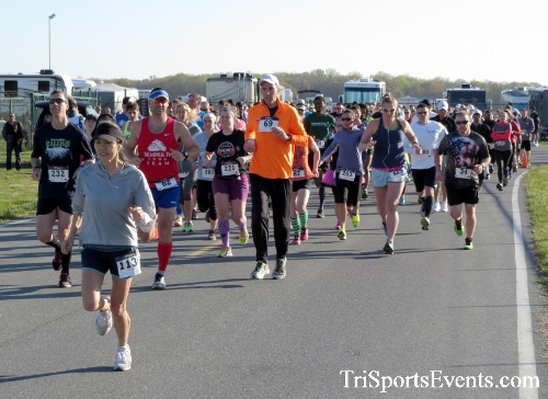 Dover Air Force Base Heritage Half Marathon & 5K<br><br><br><br><a href='http://www.trisportsevents.com/pics/16_DAFB_Half_&_5K_011.JPG' download='16_DAFB_Half_&_5K_011.JPG'>Click here to download.</a><Br><a href='http://www.facebook.com/sharer.php?u=http:%2F%2Fwww.trisportsevents.com%2Fpics%2F16_DAFB_Half_&_5K_011.JPG&t=Dover Air Force Base Heritage Half Marathon & 5K' target='_blank'><img src='images/fb_share.png' width='100'></a>