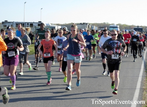 Dover Air Force Base Heritage Half Marathon & 5K<br><br><br><br><a href='http://www.trisportsevents.com/pics/16_DAFB_Half_&_5K_013.JPG' download='16_DAFB_Half_&_5K_013.JPG'>Click here to download.</a><Br><a href='http://www.facebook.com/sharer.php?u=http:%2F%2Fwww.trisportsevents.com%2Fpics%2F16_DAFB_Half_&_5K_013.JPG&t=Dover Air Force Base Heritage Half Marathon & 5K' target='_blank'><img src='images/fb_share.png' width='100'></a>