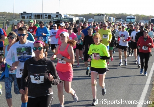 Dover Air Force Base Heritage Half Marathon & 5K<br><br><br><br><a href='http://www.trisportsevents.com/pics/16_DAFB_Half_&_5K_019.JPG' download='16_DAFB_Half_&_5K_019.JPG'>Click here to download.</a><Br><a href='http://www.facebook.com/sharer.php?u=http:%2F%2Fwww.trisportsevents.com%2Fpics%2F16_DAFB_Half_&_5K_019.JPG&t=Dover Air Force Base Heritage Half Marathon & 5K' target='_blank'><img src='images/fb_share.png' width='100'></a>