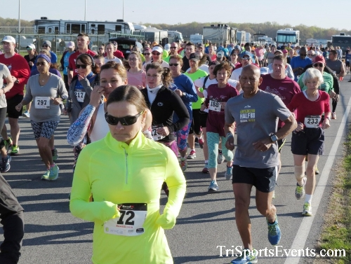 Dover Air Force Base Heritage Half Marathon & 5K<br><br><br><br><a href='http://www.trisportsevents.com/pics/16_DAFB_Half_&_5K_024.JPG' download='16_DAFB_Half_&_5K_024.JPG'>Click here to download.</a><Br><a href='http://www.facebook.com/sharer.php?u=http:%2F%2Fwww.trisportsevents.com%2Fpics%2F16_DAFB_Half_&_5K_024.JPG&t=Dover Air Force Base Heritage Half Marathon & 5K' target='_blank'><img src='images/fb_share.png' width='100'></a>