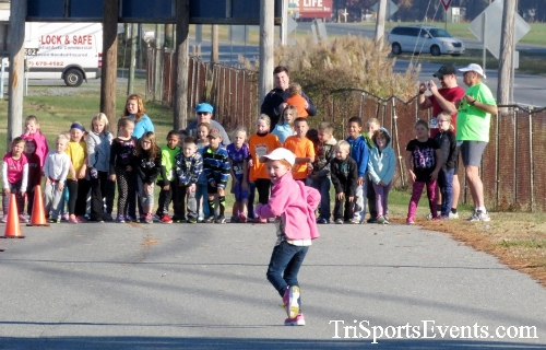 Gobble Wobble 5K Run/Walk<br><br><br><br><a href='http://www.trisportsevents.com/pics/16_Gobble_Wobble_5K_001.JPG' download='16_Gobble_Wobble_5K_001.JPG'>Click here to download.</a><Br><a href='http://www.facebook.com/sharer.php?u=http:%2F%2Fwww.trisportsevents.com%2Fpics%2F16_Gobble_Wobble_5K_001.JPG&t=Gobble Wobble 5K Run/Walk' target='_blank'><img src='images/fb_share.png' width='100'></a>