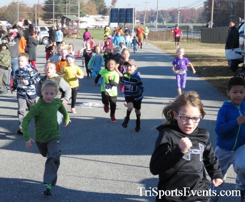 Gobble Wobble 5K Run/Walk<br><br><br><br><a href='http://www.trisportsevents.com/pics/16_Gobble_Wobble_5K_005.JPG' download='16_Gobble_Wobble_5K_005.JPG'>Click here to download.</a><Br><a href='http://www.facebook.com/sharer.php?u=http:%2F%2Fwww.trisportsevents.com%2Fpics%2F16_Gobble_Wobble_5K_005.JPG&t=Gobble Wobble 5K Run/Walk' target='_blank'><img src='images/fb_share.png' width='100'></a>