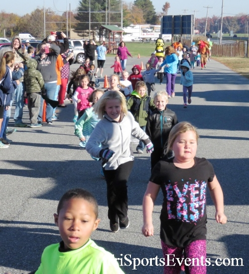 Gobble Wobble 5K Run/Walk<br><br><br><br><a href='http://www.trisportsevents.com/pics/16_Gobble_Wobble_5K_007.JPG' download='16_Gobble_Wobble_5K_007.JPG'>Click here to download.</a><Br><a href='http://www.facebook.com/sharer.php?u=http:%2F%2Fwww.trisportsevents.com%2Fpics%2F16_Gobble_Wobble_5K_007.JPG&t=Gobble Wobble 5K Run/Walk' target='_blank'><img src='images/fb_share.png' width='100'></a>