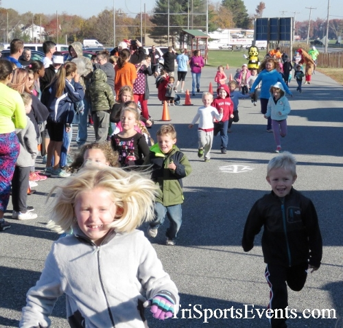 Gobble Wobble 5K Run/Walk<br><br><br><br><a href='http://www.trisportsevents.com/pics/16_Gobble_Wobble_5K_008.JPG' download='16_Gobble_Wobble_5K_008.JPG'>Click here to download.</a><Br><a href='http://www.facebook.com/sharer.php?u=http:%2F%2Fwww.trisportsevents.com%2Fpics%2F16_Gobble_Wobble_5K_008.JPG&t=Gobble Wobble 5K Run/Walk' target='_blank'><img src='images/fb_share.png' width='100'></a>