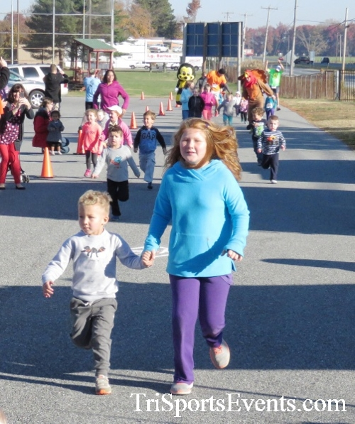 Gobble Wobble 5K Run/Walk<br><br><br><br><a href='http://www.trisportsevents.com/pics/16_Gobble_Wobble_5K_010.JPG' download='16_Gobble_Wobble_5K_010.JPG'>Click here to download.</a><Br><a href='http://www.facebook.com/sharer.php?u=http:%2F%2Fwww.trisportsevents.com%2Fpics%2F16_Gobble_Wobble_5K_010.JPG&t=Gobble Wobble 5K Run/Walk' target='_blank'><img src='images/fb_share.png' width='100'></a>