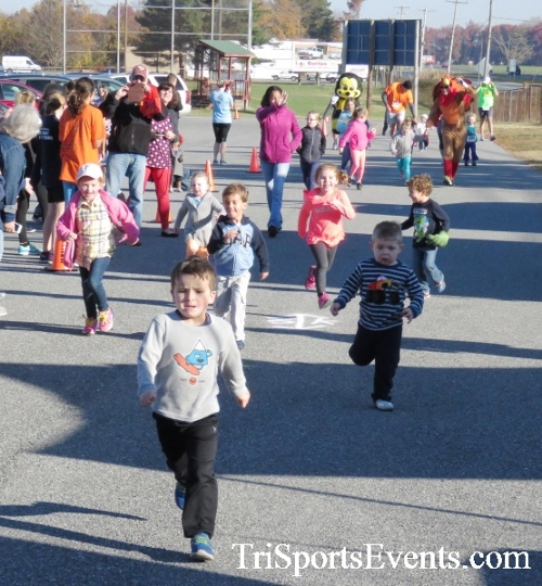 Gobble Wobble 5K Run/Walk<br><br><br><br><a href='http://www.trisportsevents.com/pics/16_Gobble_Wobble_5K_011.JPG' download='16_Gobble_Wobble_5K_011.JPG'>Click here to download.</a><Br><a href='http://www.facebook.com/sharer.php?u=http:%2F%2Fwww.trisportsevents.com%2Fpics%2F16_Gobble_Wobble_5K_011.JPG&t=Gobble Wobble 5K Run/Walk' target='_blank'><img src='images/fb_share.png' width='100'></a>