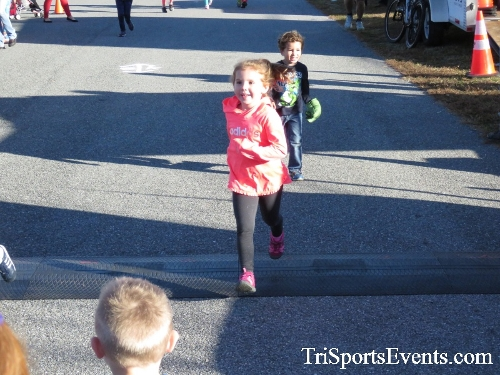 Gobble Wobble 5K Run/Walk<br><br><br><br><a href='https://www.trisportsevents.com/pics/16_Gobble_Wobble_5K_012.JPG' download='16_Gobble_Wobble_5K_012.JPG'>Click here to download.</a><Br><a href='http://www.facebook.com/sharer.php?u=http:%2F%2Fwww.trisportsevents.com%2Fpics%2F16_Gobble_Wobble_5K_012.JPG&t=Gobble Wobble 5K Run/Walk' target='_blank'><img src='images/fb_share.png' width='100'></a>