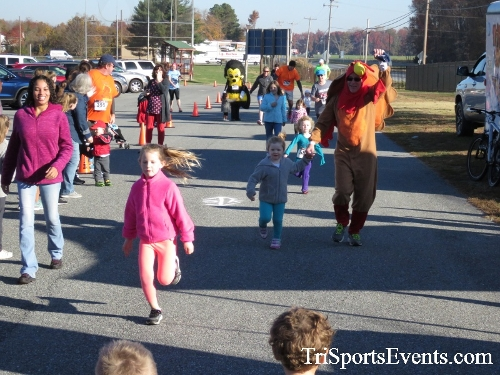 Gobble Wobble 5K Run/Walk<br><br><br><br><a href='http://www.trisportsevents.com/pics/16_Gobble_Wobble_5K_013.JPG' download='16_Gobble_Wobble_5K_013.JPG'>Click here to download.</a><Br><a href='http://www.facebook.com/sharer.php?u=http:%2F%2Fwww.trisportsevents.com%2Fpics%2F16_Gobble_Wobble_5K_013.JPG&t=Gobble Wobble 5K Run/Walk' target='_blank'><img src='images/fb_share.png' width='100'></a>