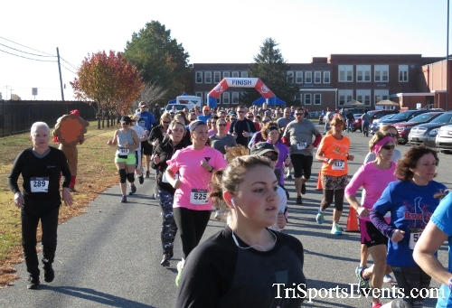 Gobble Wobble 5K Run/Walk<br><br><br><br><a href='http://www.trisportsevents.com/pics/16_Gobble_Wobble_5K_040.JPG' download='16_Gobble_Wobble_5K_040.JPG'>Click here to download.</a><Br><a href='http://www.facebook.com/sharer.php?u=http:%2F%2Fwww.trisportsevents.com%2Fpics%2F16_Gobble_Wobble_5K_040.JPG&t=Gobble Wobble 5K Run/Walk' target='_blank'><img src='images/fb_share.png' width='100'></a>