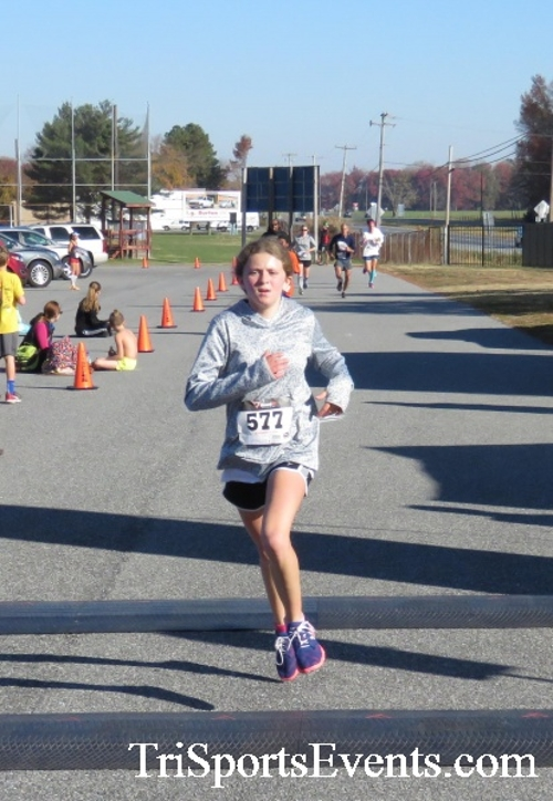 Gobble Wobble 5K Run/Walk<br><br><br><br><a href='https://www.trisportsevents.com/pics/16_Gobble_Wobble_5K_201.JPG' download='16_Gobble_Wobble_5K_201.JPG'>Click here to download.</a><Br><a href='http://www.facebook.com/sharer.php?u=http:%2F%2Fwww.trisportsevents.com%2Fpics%2F16_Gobble_Wobble_5K_201.JPG&t=Gobble Wobble 5K Run/Walk' target='_blank'><img src='images/fb_share.png' width='100'></a>