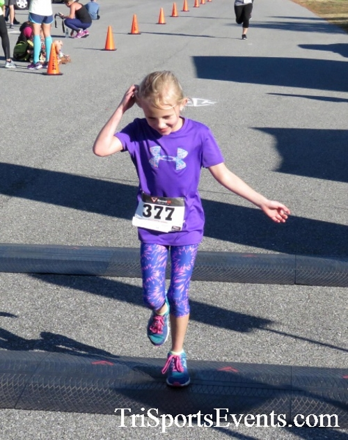 Gobble Wobble 5K Run/Walk<br><br><br><br><a href='http://www.trisportsevents.com/pics/16_Gobble_Wobble_5K_259.JPG' download='16_Gobble_Wobble_5K_259.JPG'>Click here to download.</a><Br><a href='http://www.facebook.com/sharer.php?u=http:%2F%2Fwww.trisportsevents.com%2Fpics%2F16_Gobble_Wobble_5K_259.JPG&t=Gobble Wobble 5K Run/Walk' target='_blank'><img src='images/fb_share.png' width='100'></a>