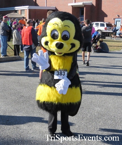 Gobble Wobble 5K Run/Walk<br><br><br><br><a href='http://www.trisportsevents.com/pics/16_Gobble_Wobble_5K_332.JPG' download='16_Gobble_Wobble_5K_332.JPG'>Click here to download.</a><Br><a href='http://www.facebook.com/sharer.php?u=http:%2F%2Fwww.trisportsevents.com%2Fpics%2F16_Gobble_Wobble_5K_332.JPG&t=Gobble Wobble 5K Run/Walk' target='_blank'><img src='images/fb_share.png' width='100'></a>