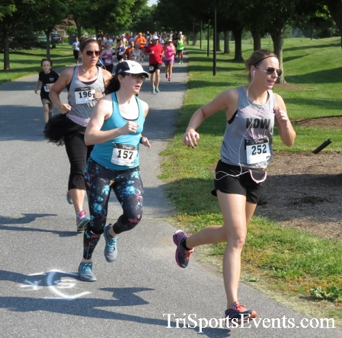 Gotta Have Faye-th 5K Run/Walk<br><br><br><br><a href='https://www.trisportsevents.com/pics/16_Gotta_Have_Faye-th_5K_020.JPG' download='16_Gotta_Have_Faye-th_5K_020.JPG'>Click here to download.</a><Br><a href='http://www.facebook.com/sharer.php?u=http:%2F%2Fwww.trisportsevents.com%2Fpics%2F16_Gotta_Have_Faye-th_5K_020.JPG&t=Gotta Have Faye-th 5K Run/Walk' target='_blank'><img src='images/fb_share.png' width='100'></a>