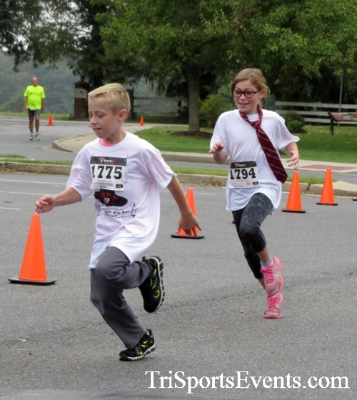 Queen of the Roses 5K Run/Walk<br><br><br><br><a href='https://www.trisportsevents.com/pics/16_Queen_of_Roses_5K_008.JPG' download='16_Queen_of_Roses_5K_008.JPG'>Click here to download.</a><Br><a href='http://www.facebook.com/sharer.php?u=http:%2F%2Fwww.trisportsevents.com%2Fpics%2F16_Queen_of_Roses_5K_008.JPG&t=Queen of the Roses 5K Run/Walk' target='_blank'><img src='images/fb_share.png' width='100'></a>