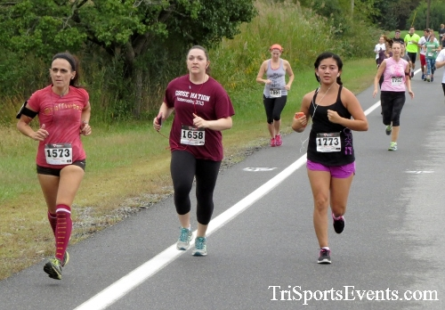Queen of the Roses 5K Run/Walk<br><br><br><br><a href='http://www.trisportsevents.com/pics/16_Queen_of_Roses_5K_016.JPG' download='16_Queen_of_Roses_5K_016.JPG'>Click here to download.</a><Br><a href='http://www.facebook.com/sharer.php?u=http:%2F%2Fwww.trisportsevents.com%2Fpics%2F16_Queen_of_Roses_5K_016.JPG&t=Queen of the Roses 5K Run/Walk' target='_blank'><img src='images/fb_share.png' width='100'></a>