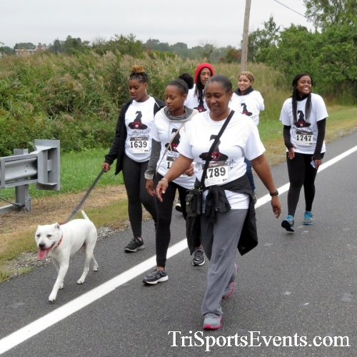 Queen of the Roses 5K Run/Walk<br><br><br><br><a href='http://www.trisportsevents.com/pics/16_Queen_of_Roses_5K_052.JPG' download='16_Queen_of_Roses_5K_052.JPG'>Click here to download.</a><Br><a href='http://www.facebook.com/sharer.php?u=http:%2F%2Fwww.trisportsevents.com%2Fpics%2F16_Queen_of_Roses_5K_052.JPG&t=Queen of the Roses 5K Run/Walk' target='_blank'><img src='images/fb_share.png' width='100'></a>