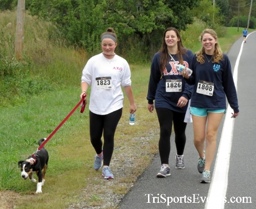 Queen of the Roses 5K Run/Walk<br><br><br><br><a href='https://www.trisportsevents.com/pics/16_Queen_of_Roses_5K_059.JPG' download='16_Queen_of_Roses_5K_059.JPG'>Click here to download.</a><Br><a href='http://www.facebook.com/sharer.php?u=http:%2F%2Fwww.trisportsevents.com%2Fpics%2F16_Queen_of_Roses_5K_059.JPG&t=Queen of the Roses 5K Run/Walk' target='_blank'><img src='images/fb_share.png' width='100'></a>