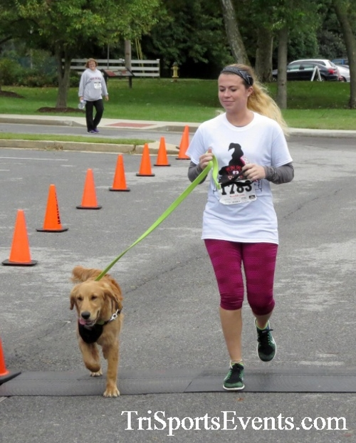 Queen of the Roses 5K Run/Walk<br><br><br><br><a href='https://www.trisportsevents.com/pics/16_Queen_of_Roses_5K_159.JPG' download='16_Queen_of_Roses_5K_159.JPG'>Click here to download.</a><Br><a href='http://www.facebook.com/sharer.php?u=http:%2F%2Fwww.trisportsevents.com%2Fpics%2F16_Queen_of_Roses_5K_159.JPG&t=Queen of the Roses 5K Run/Walk' target='_blank'><img src='images/fb_share.png' width='100'></a>
