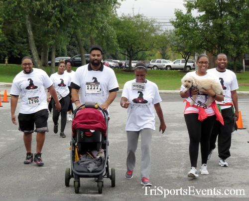 Queen of the Roses 5K Run/Walk<br><br><br><br><a href='http://www.trisportsevents.com/pics/16_Queen_of_Roses_5K_172.JPG' download='16_Queen_of_Roses_5K_172.JPG'>Click here to download.</a><Br><a href='http://www.facebook.com/sharer.php?u=http:%2F%2Fwww.trisportsevents.com%2Fpics%2F16_Queen_of_Roses_5K_172.JPG&t=Queen of the Roses 5K Run/Walk' target='_blank'><img src='images/fb_share.png' width='100'></a>